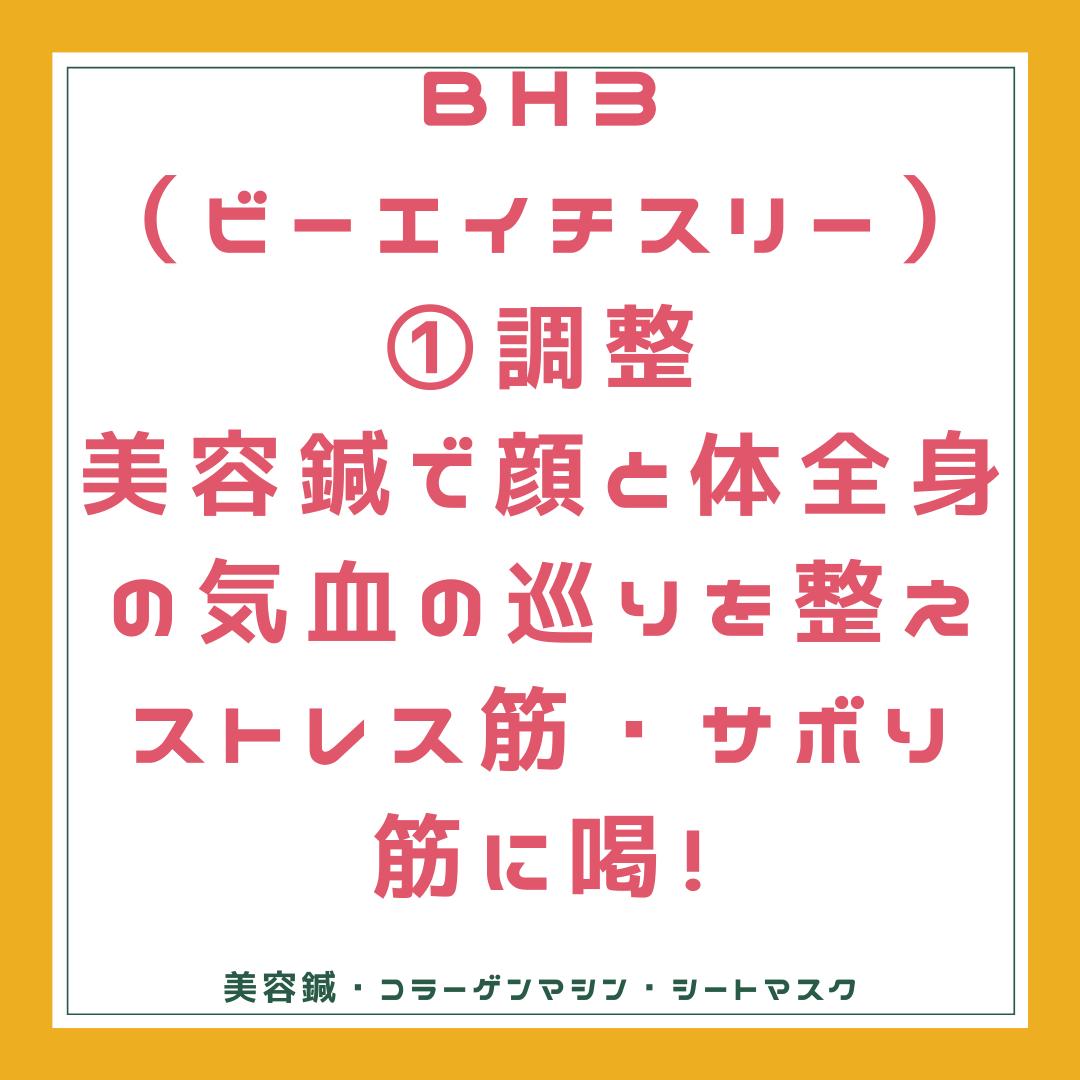 BH3 調整