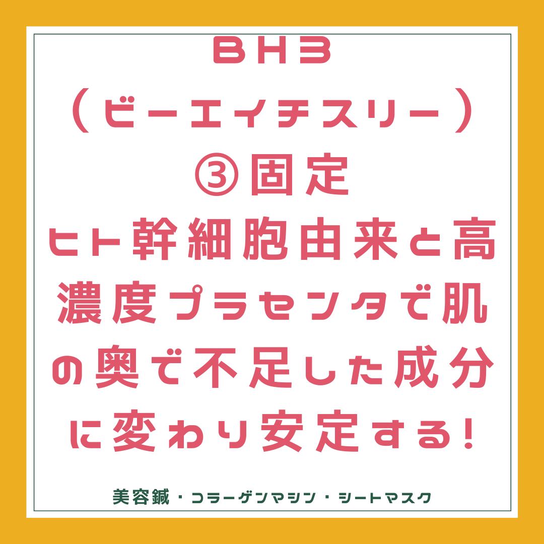 BH3 固定